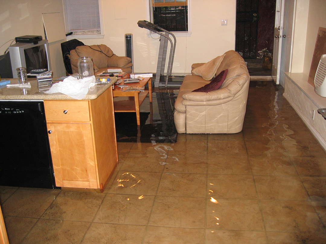 Flooding in Adam Armstrong's Brooklyn home